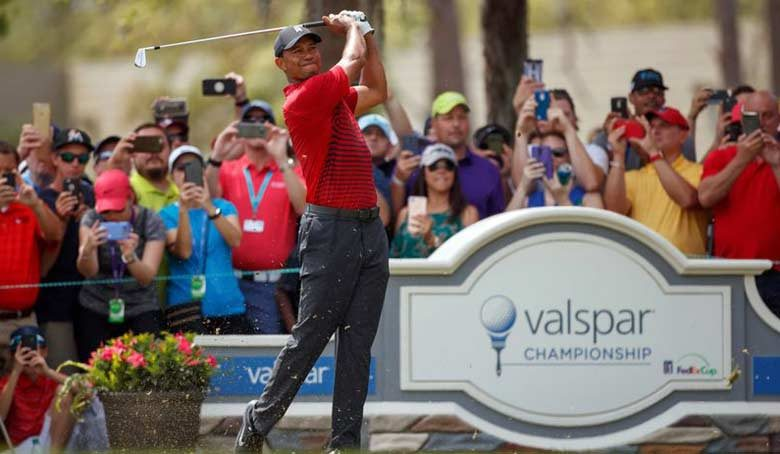 Tiger Woods at Valspar Championship